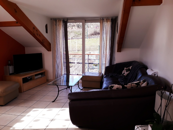 Appartement  Immobilier 3