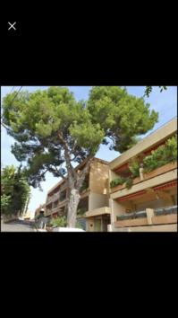 83150 BANDOL loue T 2 38 m 2 terrasse